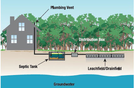 Septic Systems - Absorption Field (Leach Field)